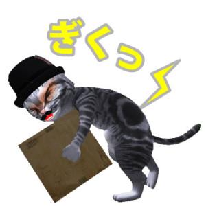 ギックリ腰_猫_上手なマッサージ屋さんの見つけ方